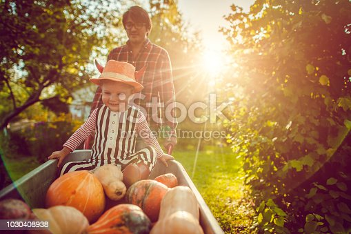 Halloween child and his father in backyard with pumpkins in cart in autumn