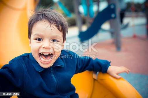 istock Cute boy happily playing on a playground slide 464646536