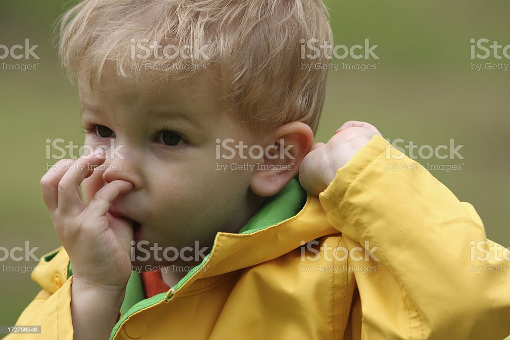 Cute boy picking nose royalty-free stock photo