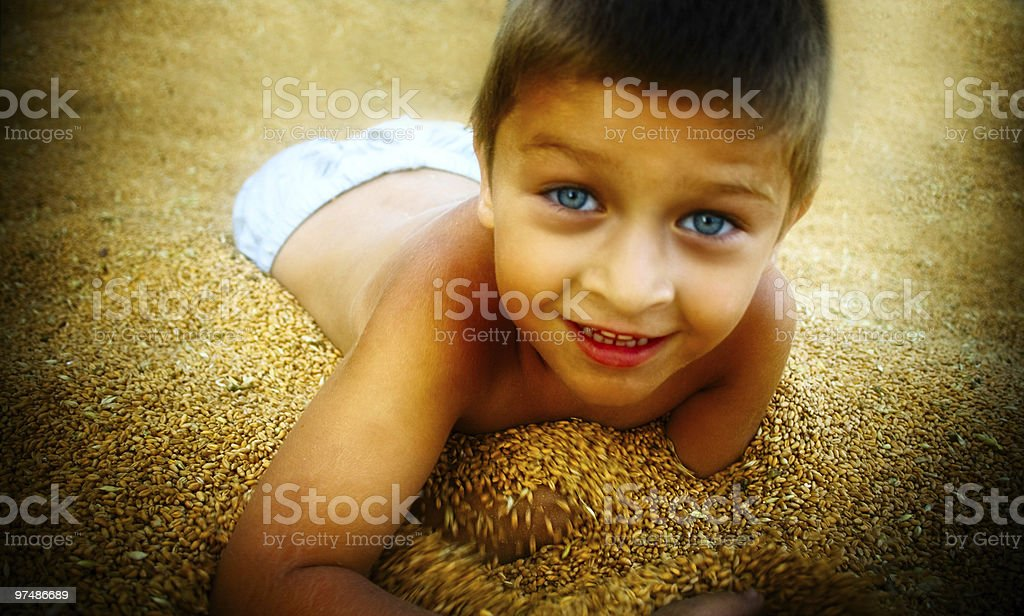 Cute boy playing in corn seeds royalty-free stock photo