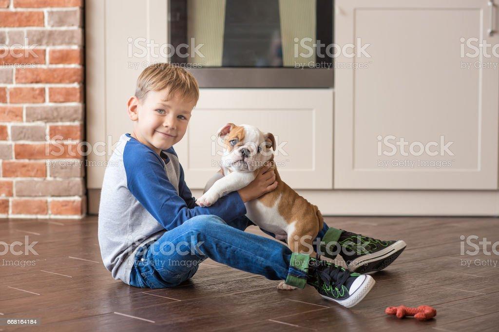 Cute boy playing with puppy english bulldog stock photo