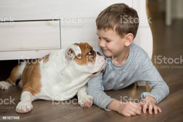 Cute boy plays on the floor on a carpet with puppies of english picture id681827948?b=1&k=6&m=681827948&s=612x612&h=kfcmehmoonzcwpipswusf ajbza68dn7e fih9jgrfu=