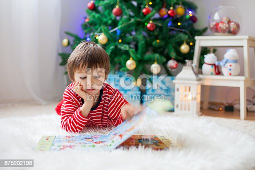 istock Cute boy, reading a book in front of Christmas tree 875202198