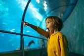 Little boy is so exciting in public Aquarium