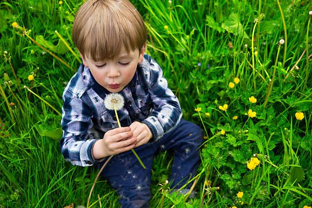 Süße Junge mit Löwenzahnmotiv – Foto