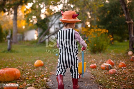 istock Cute boy with pumpkins at Halloween in autumn 1168166409