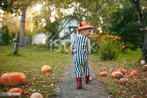 istock Cute boy with pumpkins at Halloween in autumn 1173878069