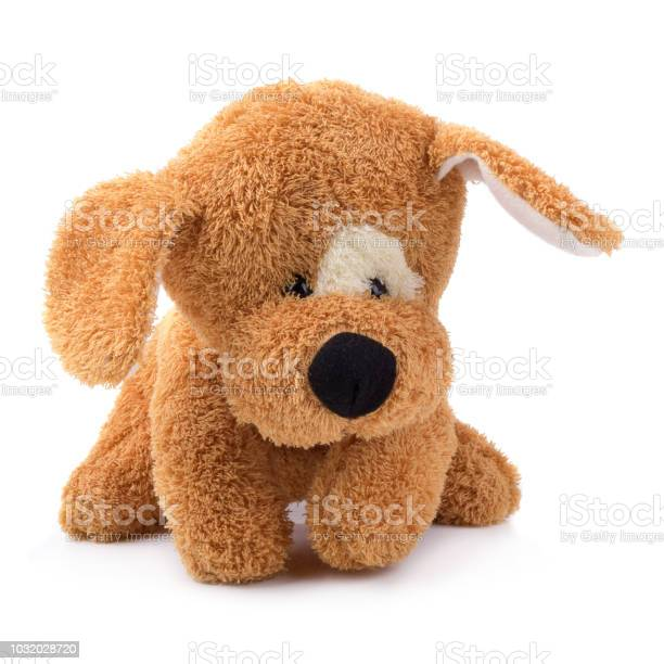 Cute brown dog sitting isolated on white background picture id1032028720?b=1&k=6&m=1032028720&s=612x612&h=qnfcnhhh 6vvltl07hdo7 tbrq5fb1wcetpcjvxf w0=