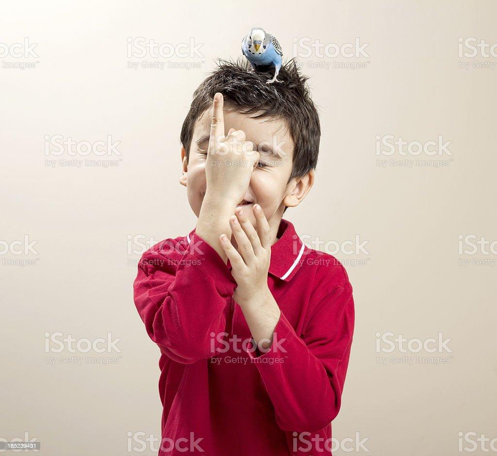 Süße budgies auf ein Kind's head. Lizenzfreies stock-foto
