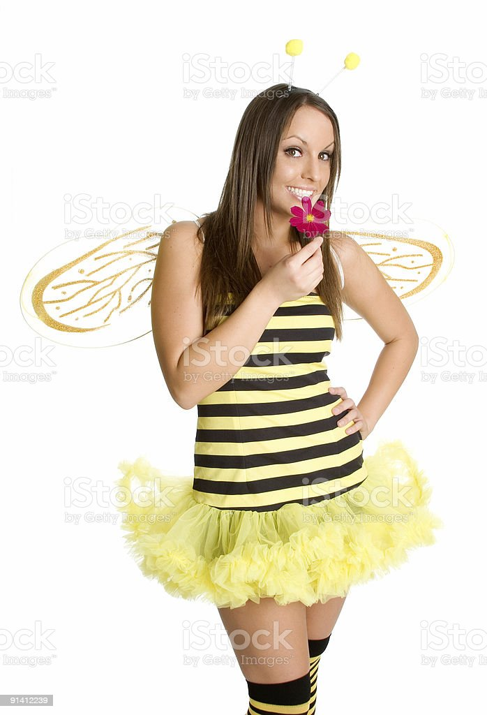 Cute Bumble Bee royalty-free stock photo