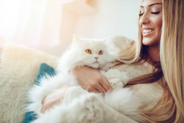 Cute cat and girl picture id927916820?b=1&k=6&m=927916820&s=612x612&w=0&h=x8tchvrthh7qx13schlu6jresxqdfmazpn8bt etp0m=
