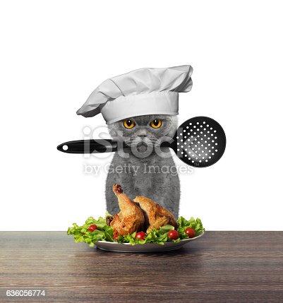 istock Cute cat chef is preparing chicken 636056774