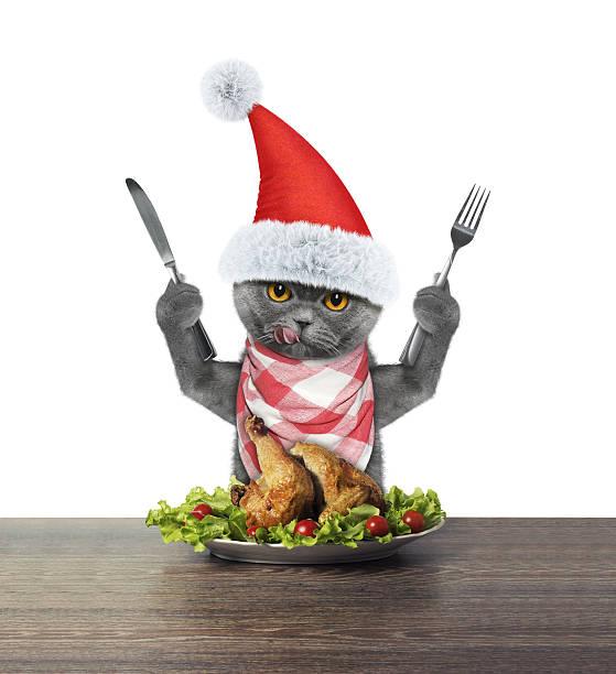 Cute cat going to eat festive christmas duck picture id629247380?b=1&k=6&m=629247380&s=612x612&w=0&h=rgppc0pc5su7ddc5 i7go8gztchr2zczn n22oli944=