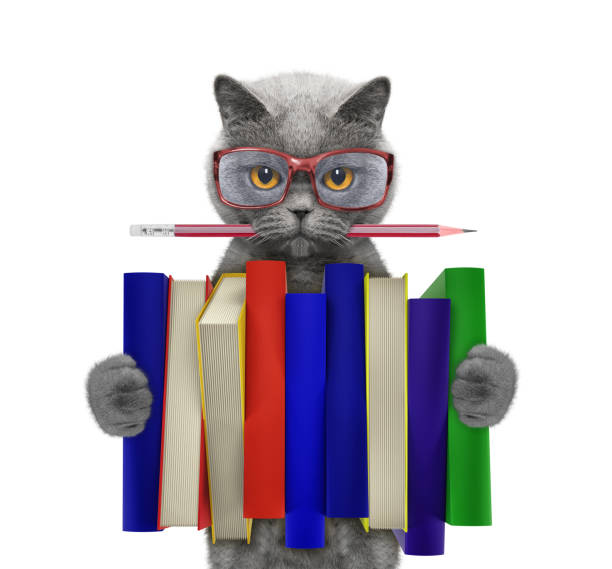Cute cat holding a big stack of books isolated on white picture id823771750?b=1&k=6&m=823771750&s=612x612&w=0&h=t5rozgvzrfeosufbgfyj8ywd19prxmiw7qmz2smnluo=