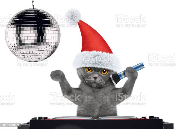 Cute cat in christmas hats singing with microphone a karaoke song on picture id1079058150?b=1&k=6&m=1079058150&s=612x612&h=iuc3bbywxdjeehsabu0ghcrbjruyymzvbf4my7u4st8=
