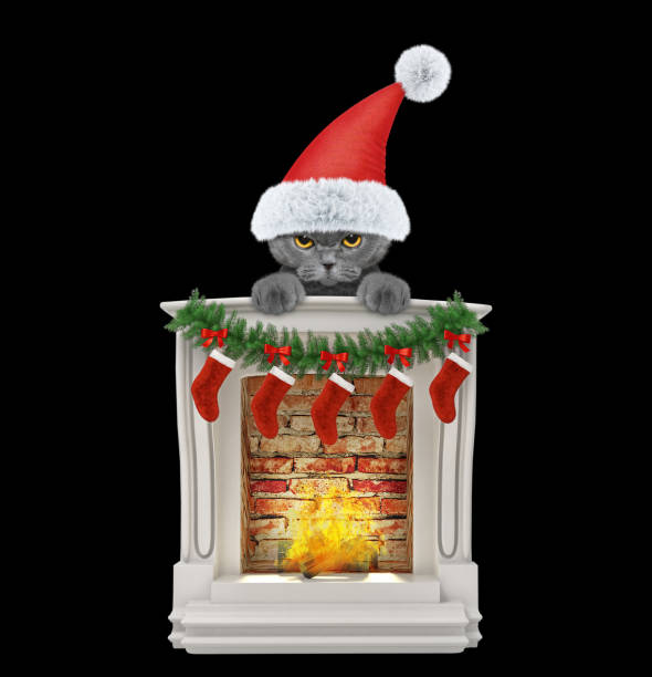 Cute cat near fireplace isolated on black picture id1081296364?b=1&k=6&m=1081296364&s=612x612&w=0&h=kasyamyauoeksy5fxlpopdexa72zzfcezfm 6etk418=