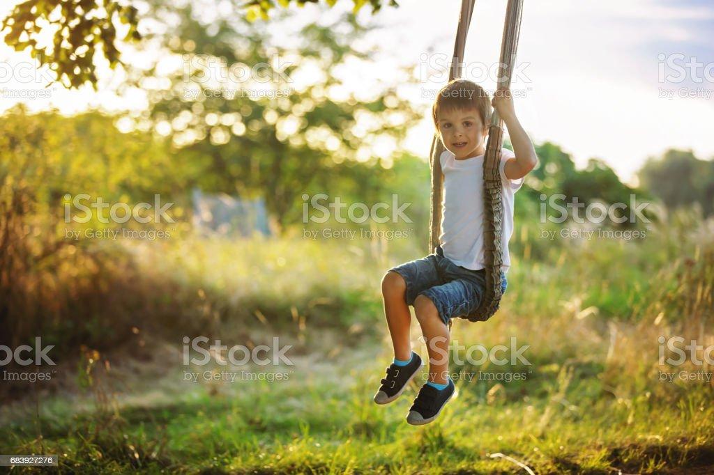 Cute child, boy, having fun on a swing in the backyard on sunset stock photo