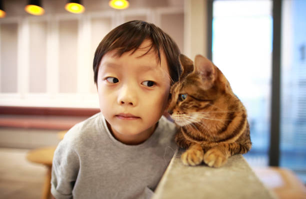 Cute children and cat picture id1000823870?b=1&k=6&m=1000823870&s=612x612&w=0&h= jmtdblhxubw gxc4m9wd1qzb3rvefg2kidx35iefca=