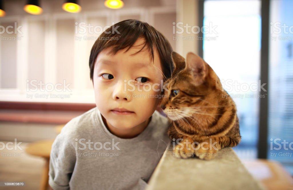 Cute children and cat stock photo