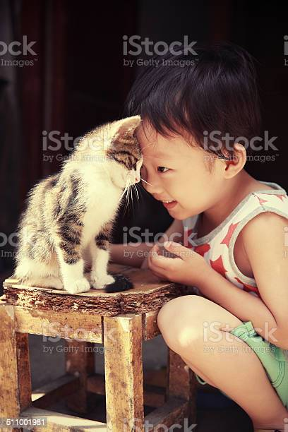 Cute children and cat picture id511001981?b=1&k=6&m=511001981&s=612x612&h=remn5oupl29so9egjfoyjagvxljcjho18md2hnzrs74=