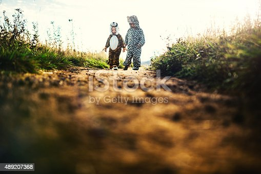 Two young kids dressed up in wild cat costumes ( a cheetah and a lion ) play and explore in a vast outdoor area.  Here they walk up a dirt trail, looking at their surroundings. Meant to depict the imagination of a child, discovery, play, and exploration.  Horizontal with copy space.