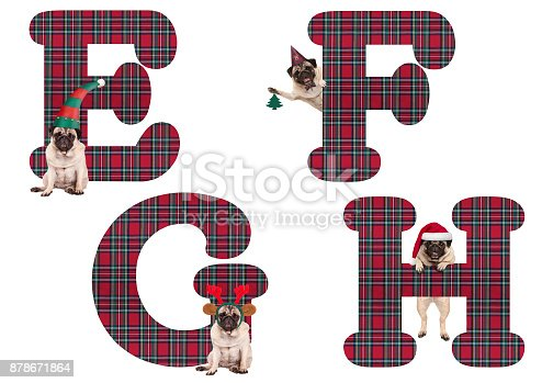 cute christmas pug puppy dog alphabet letters e f g h stock photo more pictures of alphabet istock