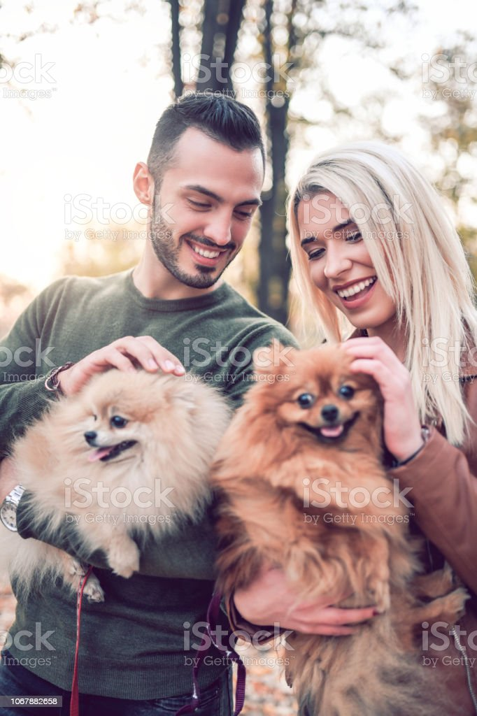 Cute Couple Taking A Autumn Walk In The Park With His Little Puppies stock photo