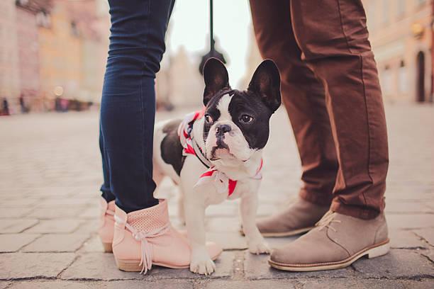Cute dog and couple picture id470958934?b=1&k=6&m=470958934&s=612x612&w=0&h=xfbbpuis57iyw7t4op3bx8iwr9bfzj1u7hhxcunjy44=