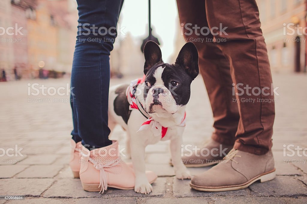 cute dog and couple stock photo