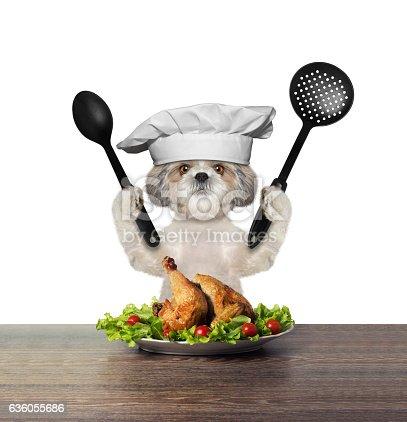 istock Cute dog chef is preparing chicken 636055686