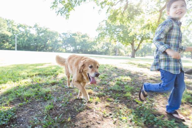 Cute dog follows a young boy in the park picture id845953762?b=1&k=6&m=845953762&s=612x612&w=0&h=iixqefwgz85hm0qzunnnz9vkq8z6yfjmex93rpieknq=