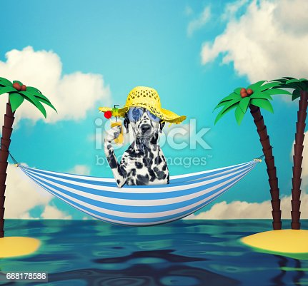 531058808istockphoto Cute dog in glasses relaxing on the beach 668178586