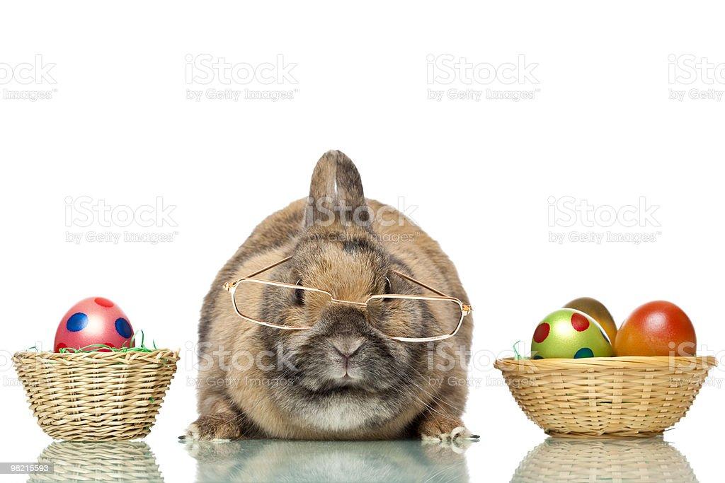 Simpatico Coniglietto di Pasqua con uova colorate gli occhiali seduto tra foto stock royalty-free