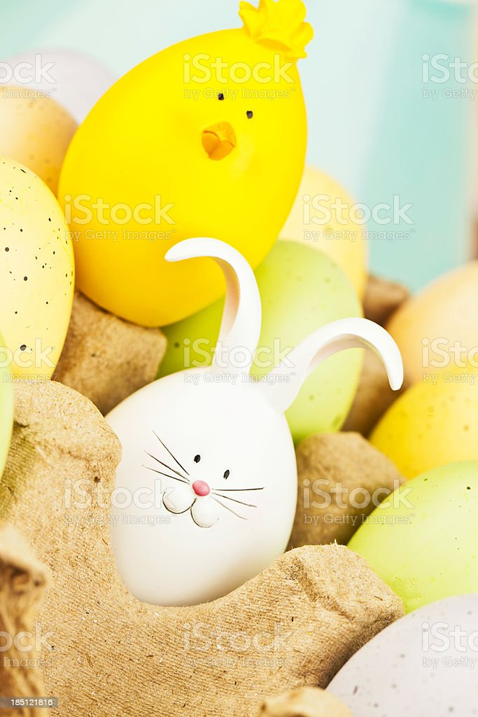 Cute Easter Critters in Egg Carton royalty-free stock photo