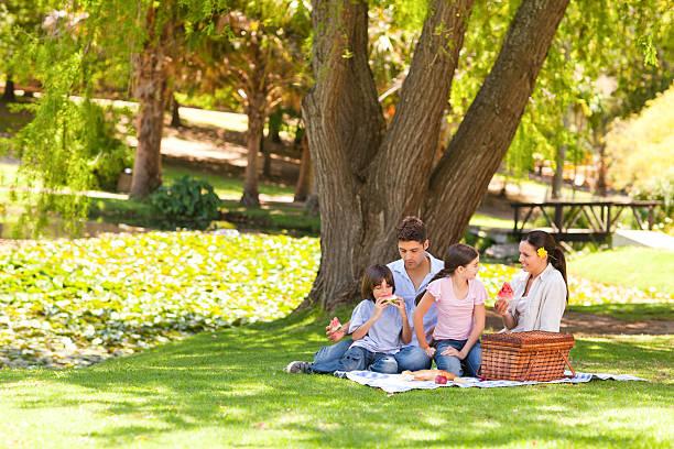 carino famiglia fare pic-nic nel parco - pasto al sacco foto e immagini stock