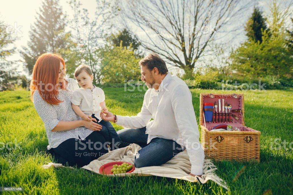 cute family sitting in a sunny park zbiór zdjęć royalty-free