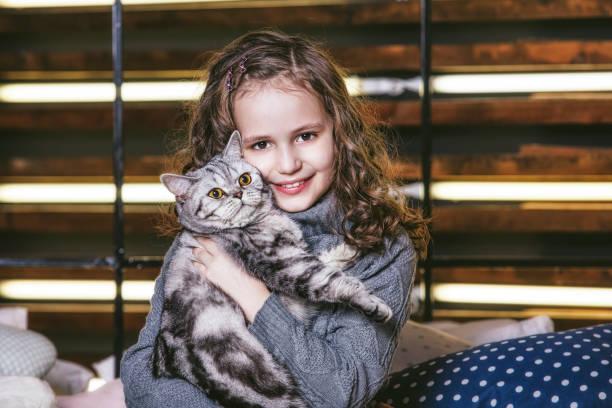 Cute fashion little girl with a british kitten in the arms of very picture id1080942484?b=1&k=6&m=1080942484&s=612x612&w=0&h=5kozrvv0fmbr5tioasz9i jg39oarcjzacvh1fk0b6k=