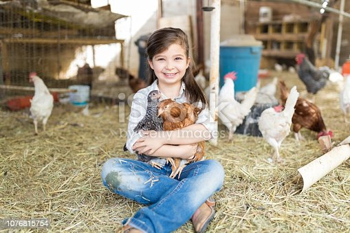 Full length of smiling little girl holding chickens while sitting on hay at poultry farm