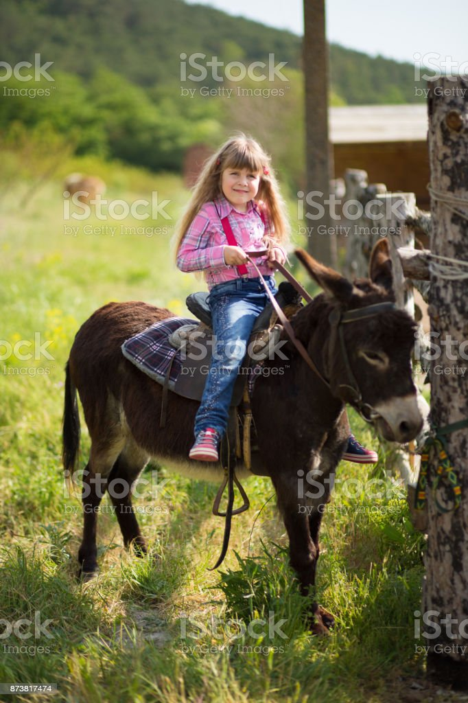 Cute fermer beautiful girl cowboy in jeans enjoying summer day in village life with flowers wearing leather cow hat happyly smiling and sitting on horse . stock photo