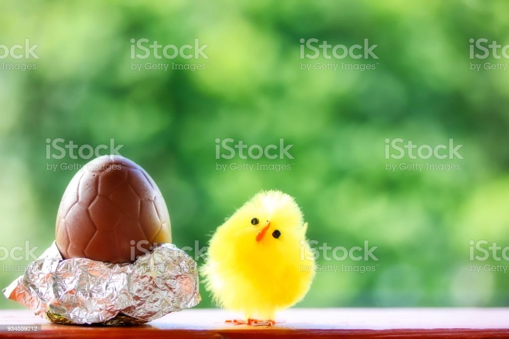 Cute Fluffy Chick And Chocolate Egg For Easter stock photo