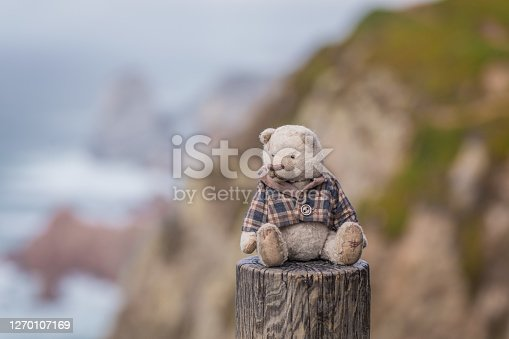 Cute fluffy teddy bear sitting on the fence with the seaside background