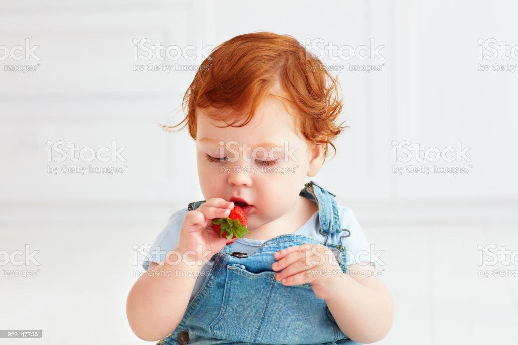 かわいいジンジャー幼児赤ちゃんのイチゴを試食 ストックフォト