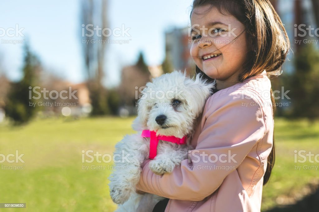 Cute girl and cute puppy stock photo