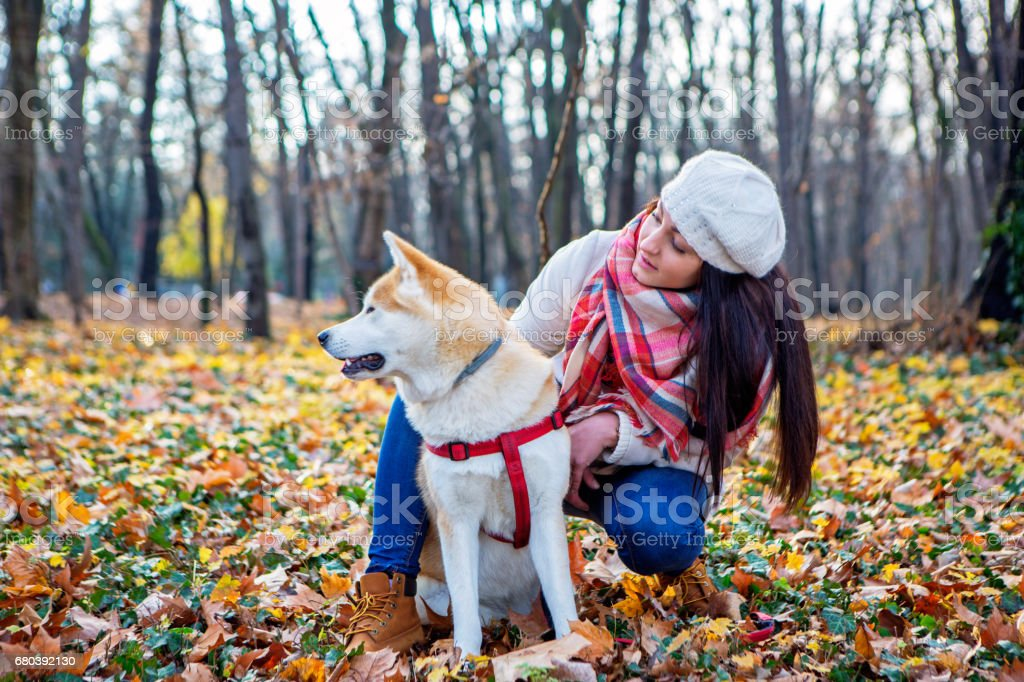 Cute girl and her dog spending day together and having fun i the public park royalty-free stock photo