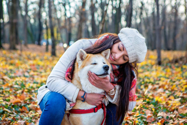 Cute girl and her dog spending day together and having fun i the public park. stock photo