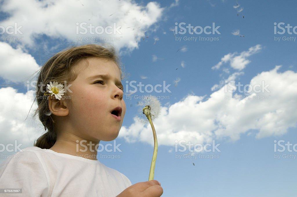 Cute girl blowing dandelion royalty-free stock photo