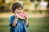 Cute caucasian girl in blue dress eating juicy watermelon at picnic on meadow