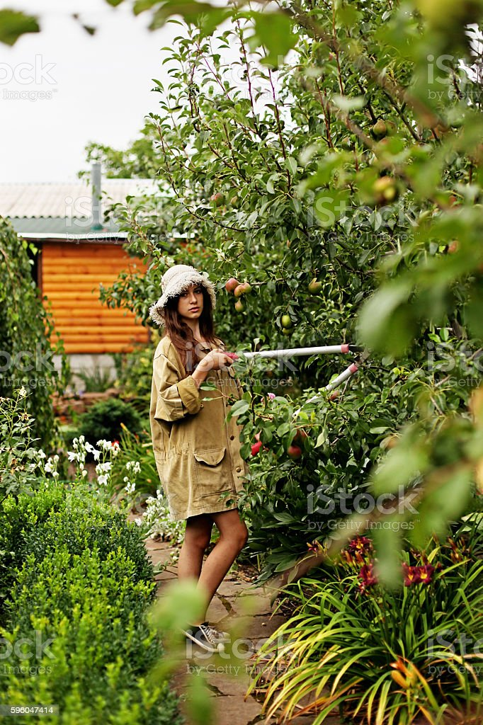 Cute girl gardener makes cutting with large garden scissors. royalty-free stock photo
