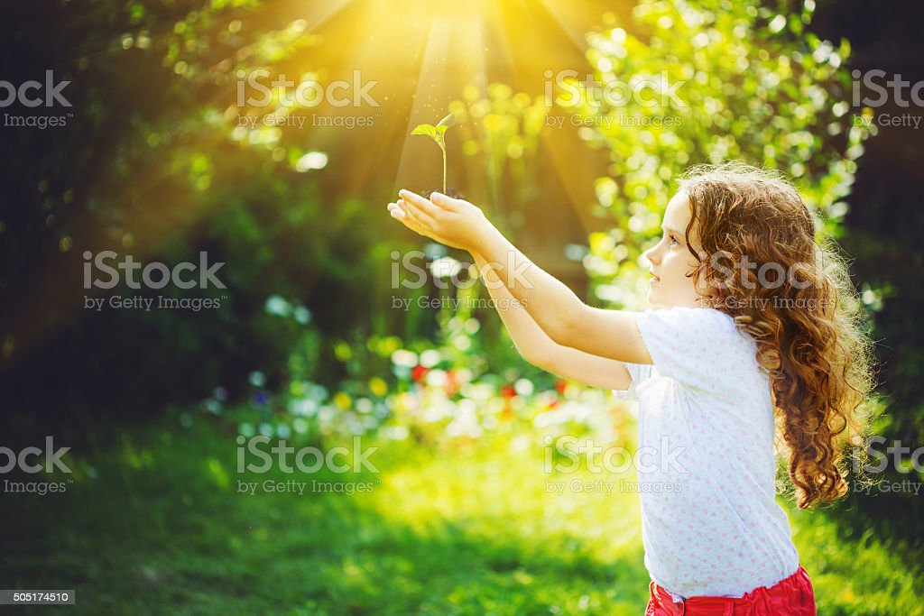 Cute girl holding young green plant in sunlight. stock photo