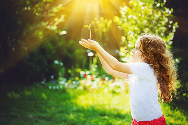 Süßes Mädchen holding junge Grüne Pflanze in Sonnenlicht. – Foto